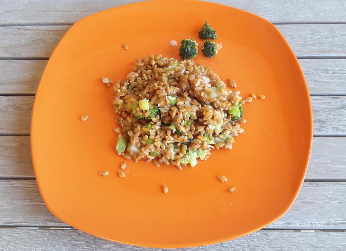 ricette di primi piatti: farro monococco gorgonzola broccolo e noci