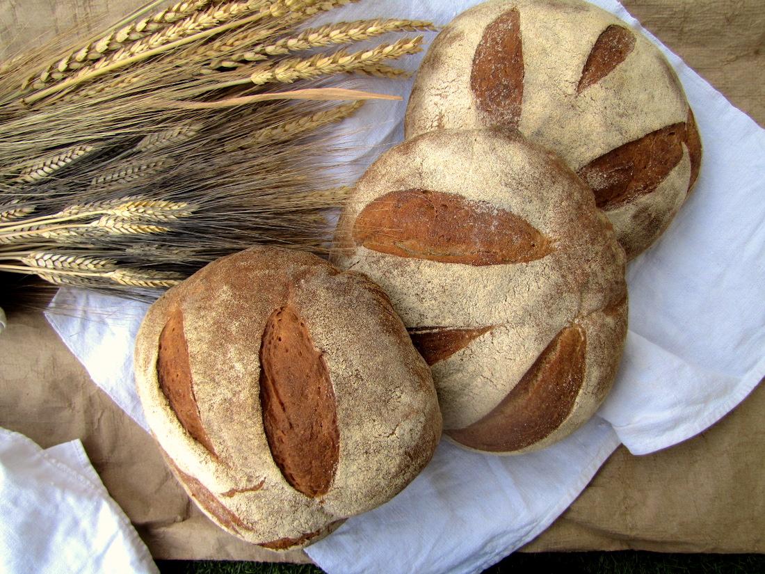 Pane con lievito madre. Pane con farina-grani-antichi